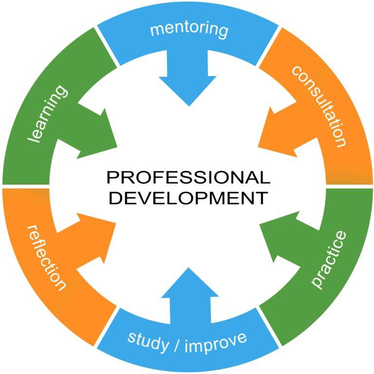 mentoring  PROFESSIONAL  DEVELOPMENT  study / improve
